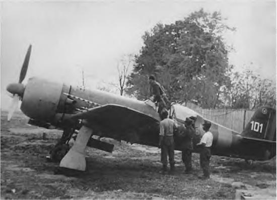 IAR 81
