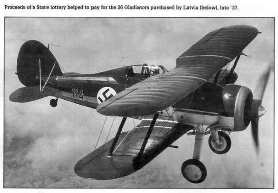 latvian gloster