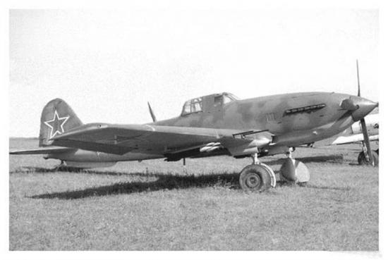 il-10-1.jpg